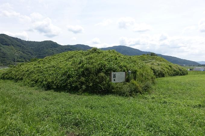 車塚古墳 No6