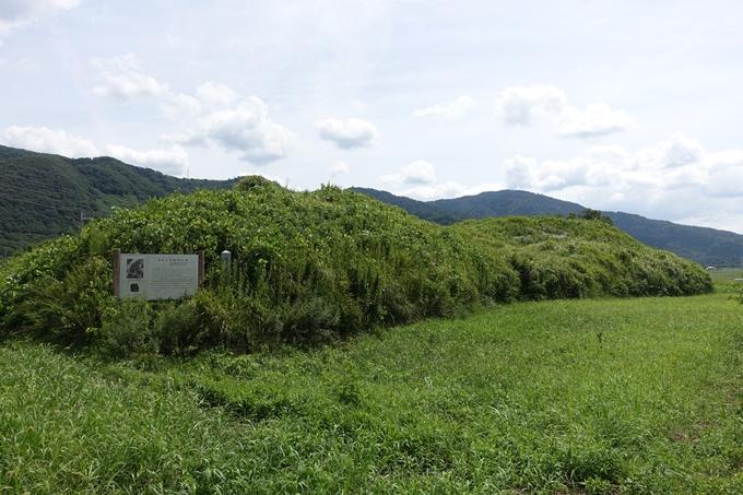 車塚古墳 No7
