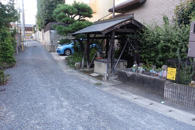 いさら井 No5