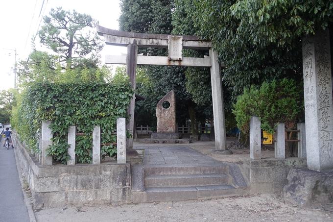 大酒神社 No9