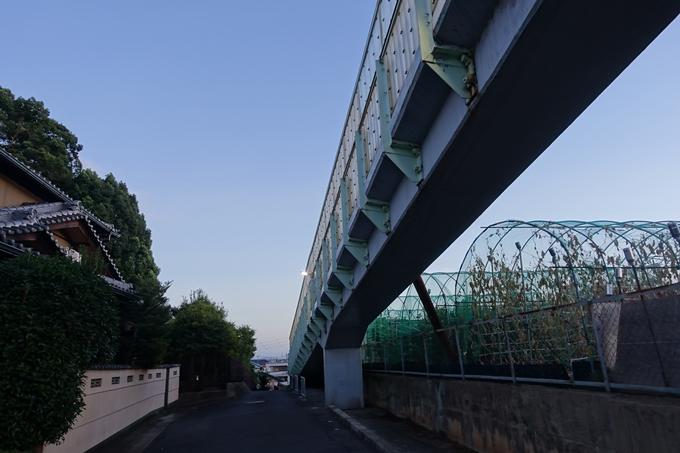 垂箕山古墳 No11