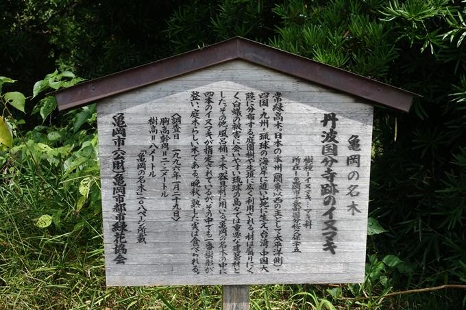 丹波国分寺跡 No10