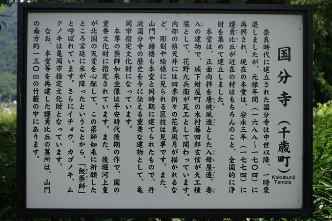丹波国分寺跡 No13