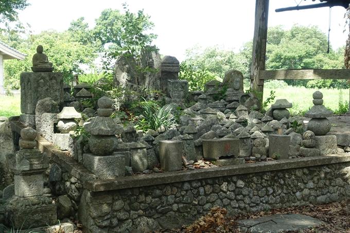 丹波国分寺跡 No20