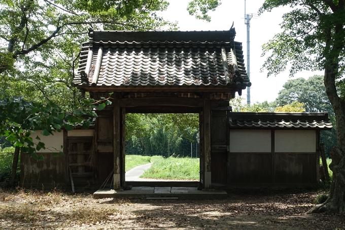 丹波国分寺跡 No42