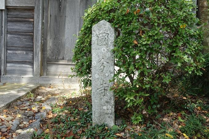 丹波国分寺跡 No43