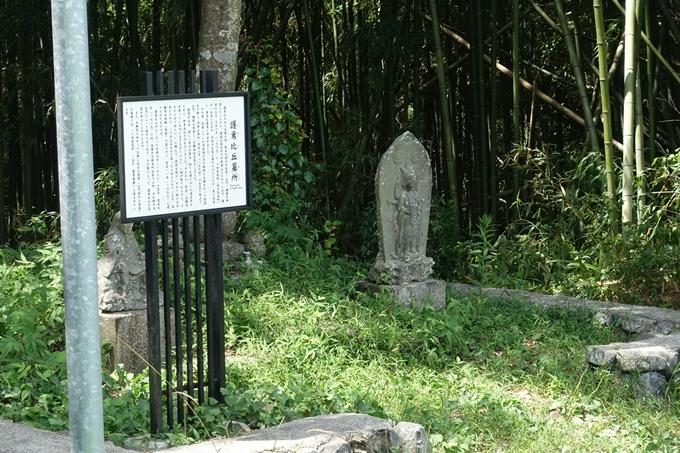 丹波国分寺跡 No46