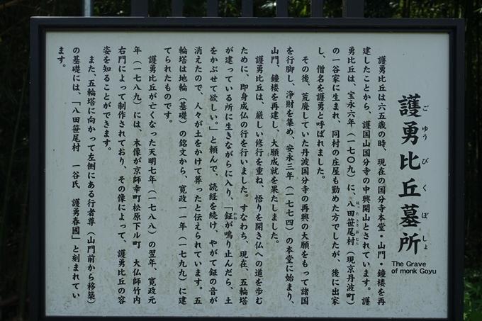 丹波国分寺跡 No47
