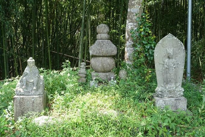 丹波国分寺跡 No48