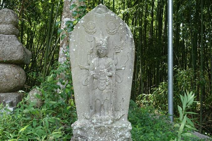 丹波国分寺跡 No49