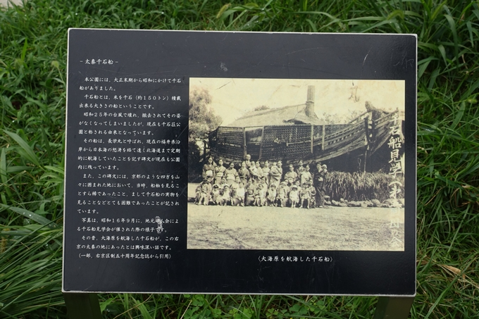 千石荘公園 No4