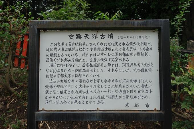 天塚古墳 No5