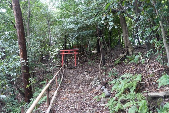 天塚古墳 No15