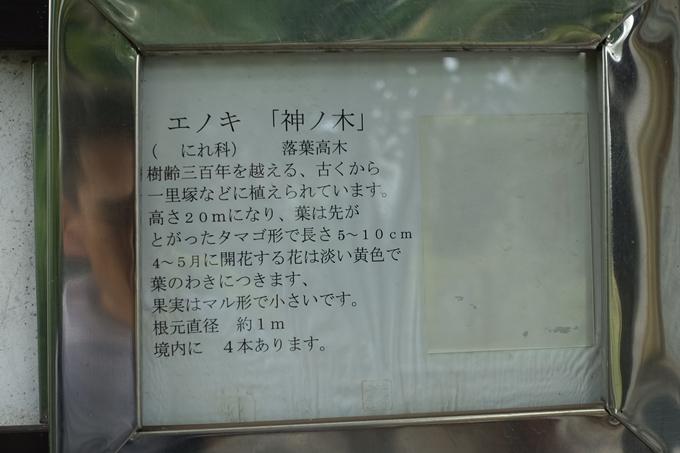 神ノ木弁財天 No11