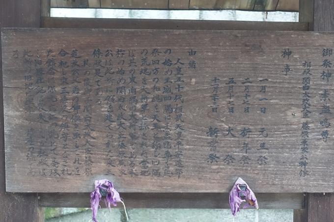 大将軍神社 No41