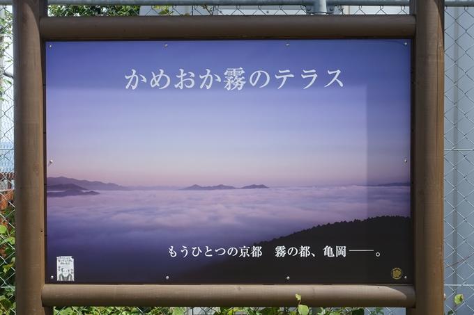 亀岡_霧のテラス_02 No2