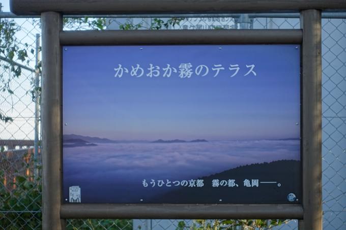 かめおか_霧のテラス_03 No1