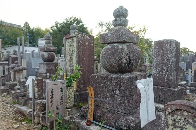 斎藤利三 墓 No5