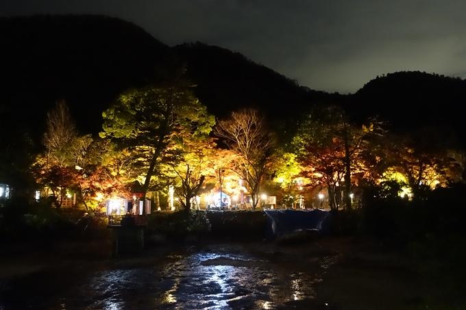 京都紅葉速報2018 その6 出雲神社_ライトアップ No2