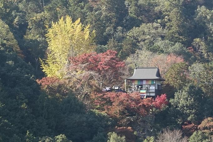 京都紅葉速報2018 その13 嵯峨嵐山 No35