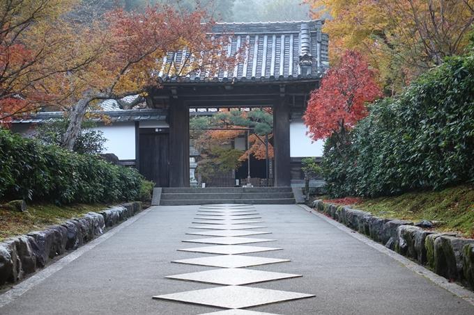 京都紅葉速報2018 その18 南禅寺・哲学の道 No39