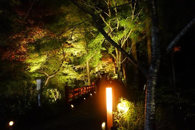 京都紅葉速報2018 その2 神蔵寺ライトアップ No2
