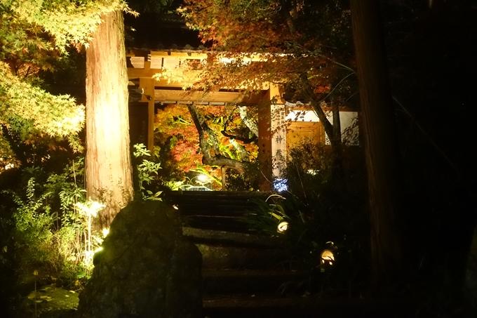 京都紅葉速報2018 その2 神蔵寺ライトアップ No6