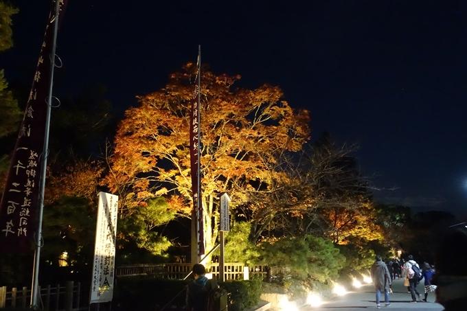 京都のライトアップ2018 大覚寺 No2