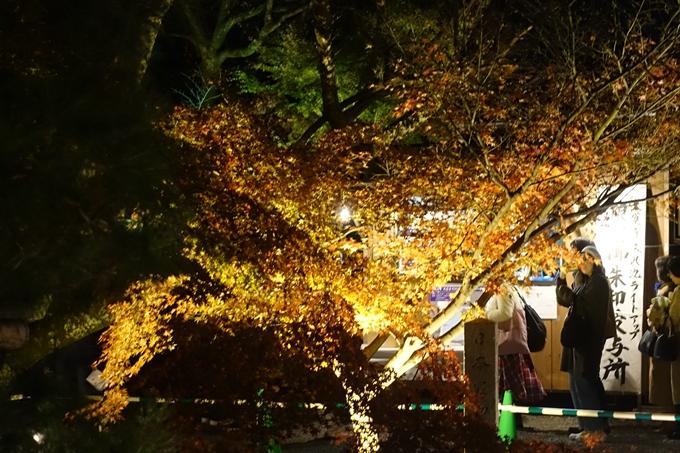 京都のライトアップ2018 大覚寺 No3