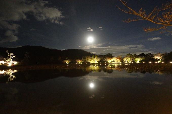 京都のライトアップ2018 大覚寺 No7