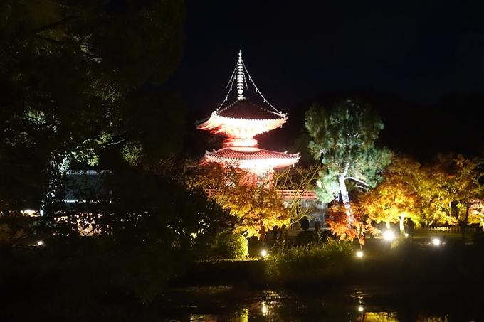 京都のライトアップ2018 大覚寺 No9