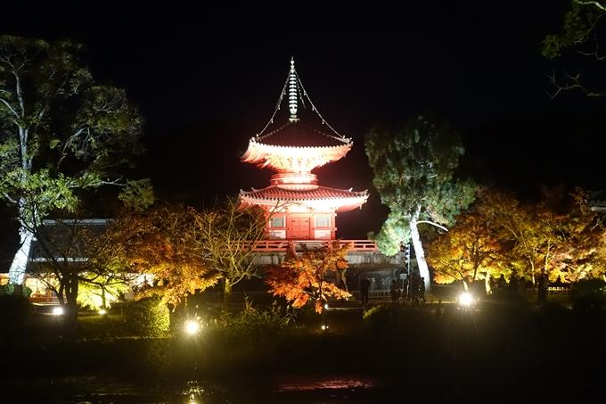 京都のライトアップ2018 大覚寺 No10