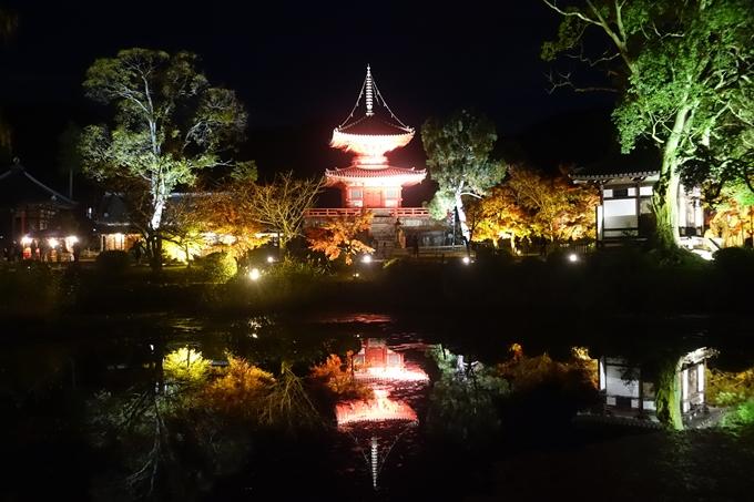 京都のライトアップ2018 大覚寺 No11