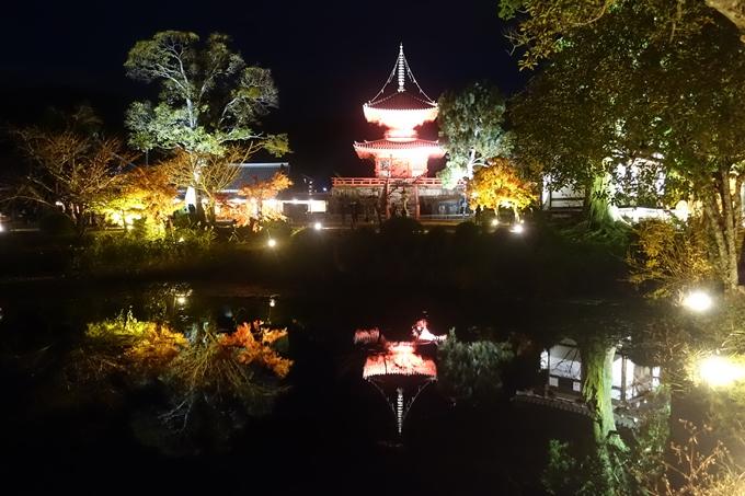京都のライトアップ2018 大覚寺 No12