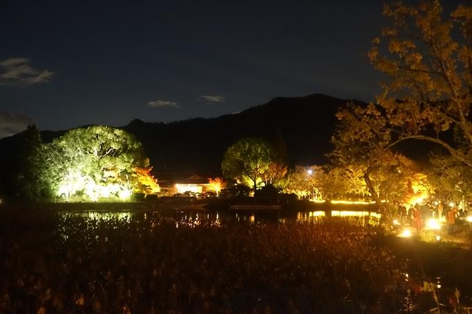 京都のライトアップ2018 大覚寺 No15