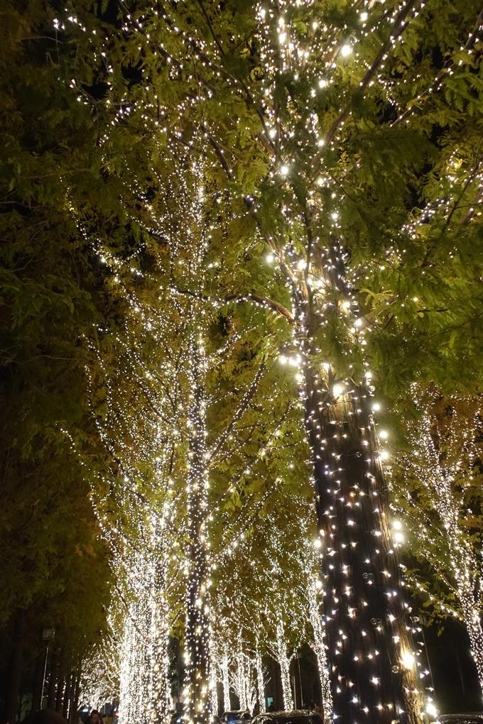 京都のライトアップ2018 ロームクリスマスイルミネーション No8