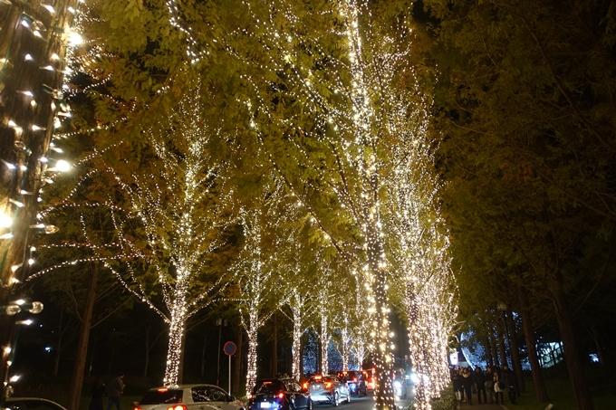 京都のライトアップ2018 ロームクリスマスイルミネーション No10