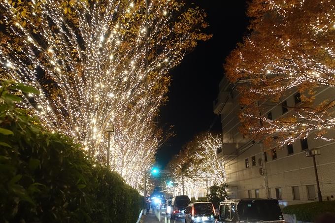 京都のライトアップ2018 ロームクリスマスイルミネーション No11