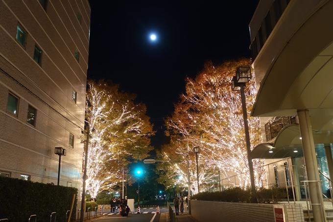 京都のライトアップ2018 ロームクリスマスイルミネーション No13