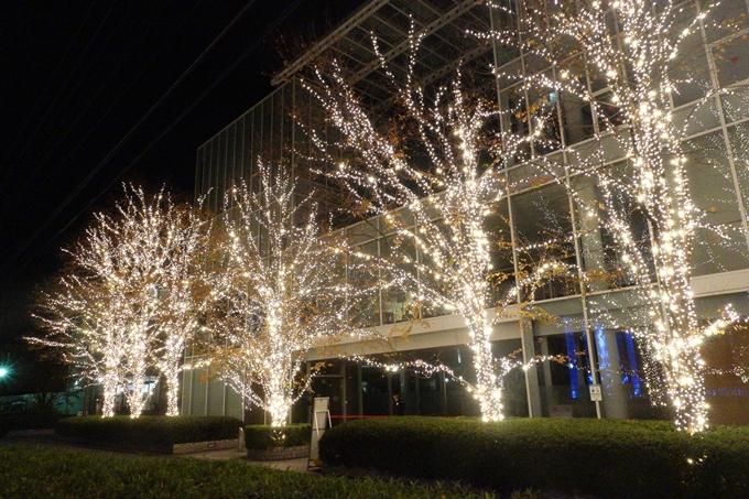 京都のライトアップ2018 ロームクリスマスイルミネーション No18