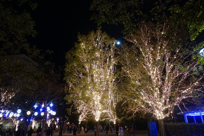 京都のライトアップ2018 ロームクリスマスイルミネーション No20