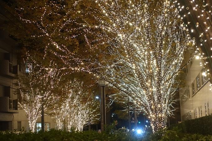 京都のライトアップ2018 ロームクリスマスイルミネーション No23