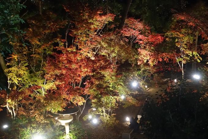 京都のライトアップ2018 北野天満宮 No18