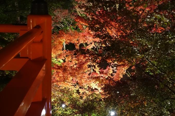 京都のライトアップ2018 北野天満宮 No30