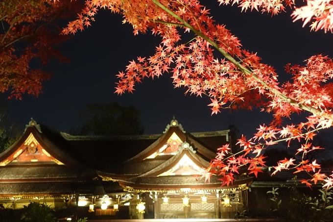 京都のライトアップ2018 北野天満宮 No36