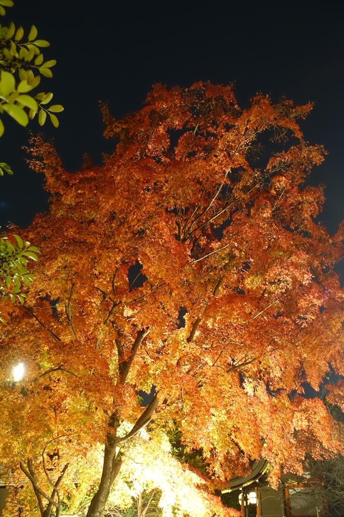 京都のライトアップ2018 北野天満宮 No40