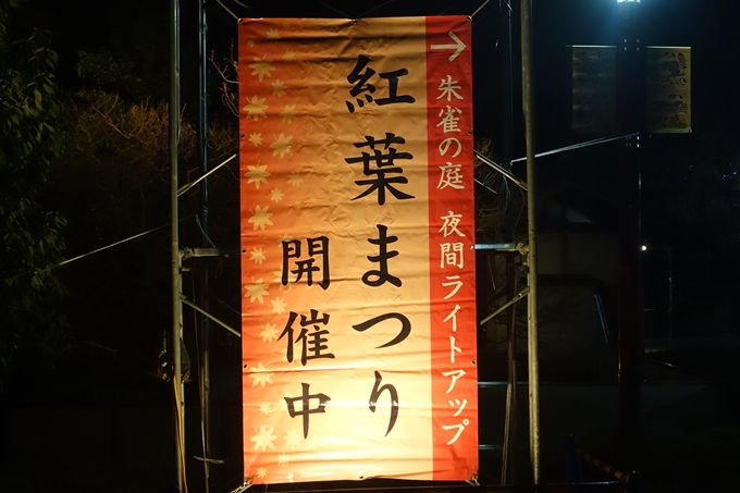 京都のライトアップ2018 梅小路公園 紅葉まつり No3