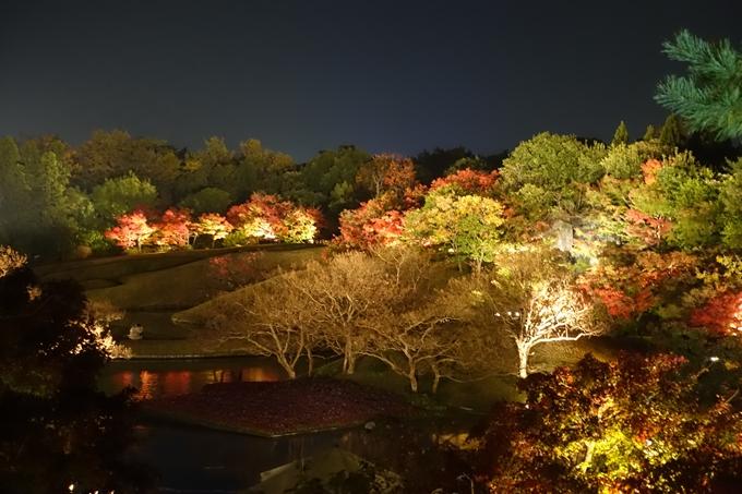 京都のライトアップ2018 梅小路公園 紅葉まつり No6