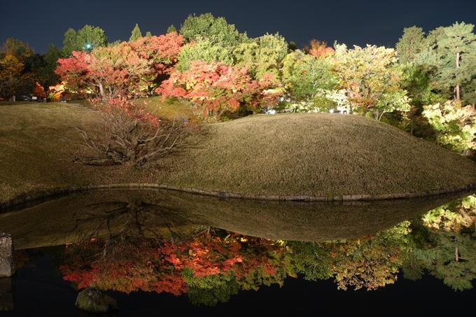 京都のライトアップ2018 梅小路公園 紅葉まつり No12