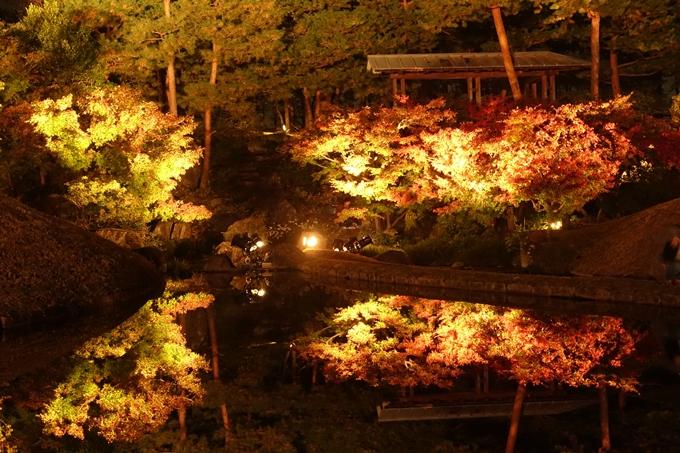 京都のライトアップ2018 梅小路公園 紅葉まつり No13